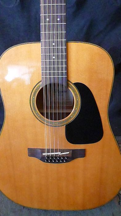 price reduced takamine 12 string acoustic guitar outside victoria victoria. Black Bedroom Furniture Sets. Home Design Ideas