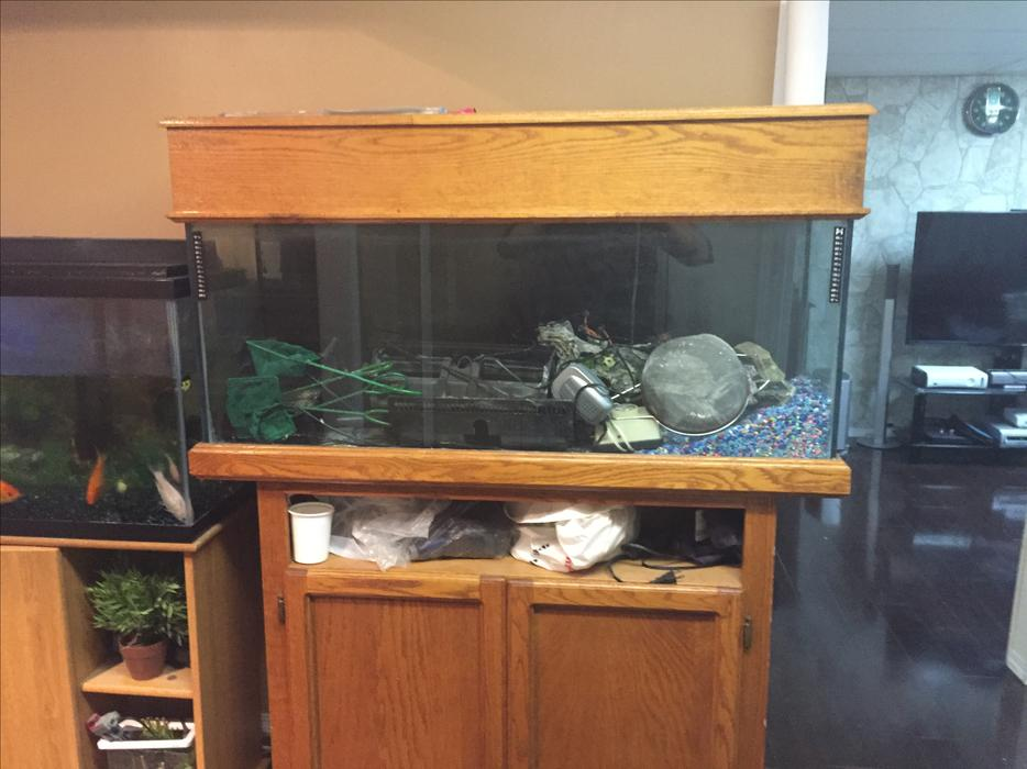 Two 55 gallon fish tank with stands each 200 east regina for 100 gallon fish tank with stand