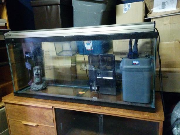 55g saltwater aquarium set up south nanaimo nanaimo for Used 300 gallon fish tank for sale