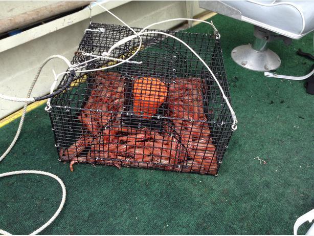 Gear Puller Toronto : Prawn traps line and puller saanich victoria