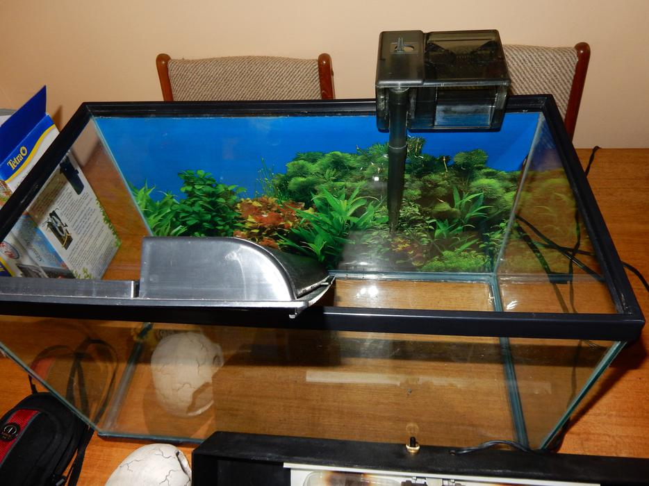 10 gallon tank with lid lights and filter victoria city for 20 gallon fish tank lid