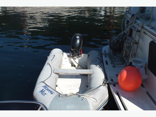 outboard lehr 9 9 propane inflatable weaver davit system campbell river courtenay comox mobile. Black Bedroom Furniture Sets. Home Design Ideas