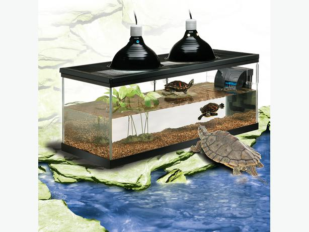 Deluxe Turtle Tank and Filter Central Nanaimo, Nanaimo