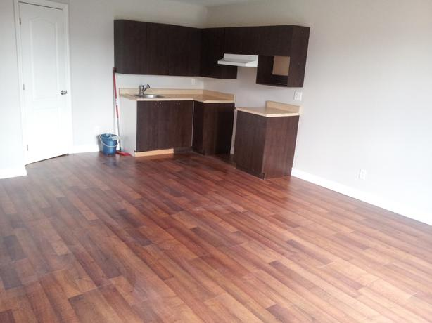 A louer superbes 2 chambres great 2 bedroom for rent for Chambre a louer gatineau hull
