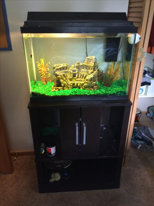 20 gallon tank stand and fish sooke victoria for 100 gallon fish tank with stand