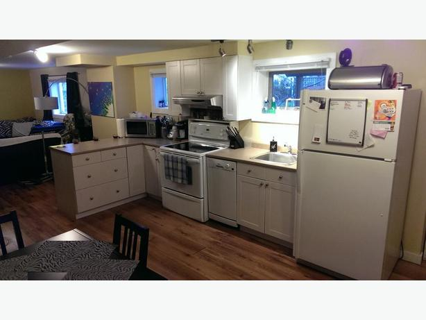 newly renovated above ground basement suite available april 1st 2017