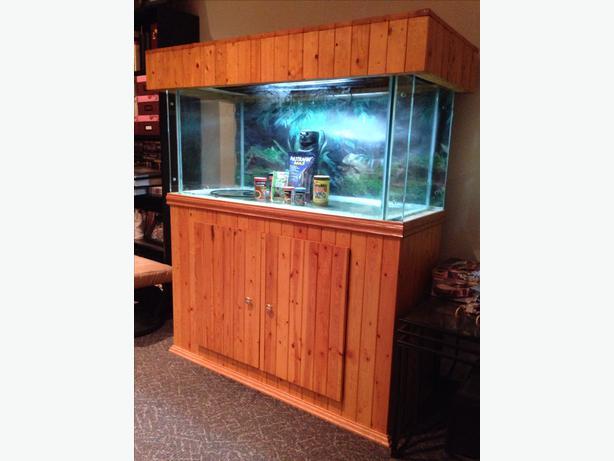 Aquarium north regina regina for 200 gallon fish tank for sale