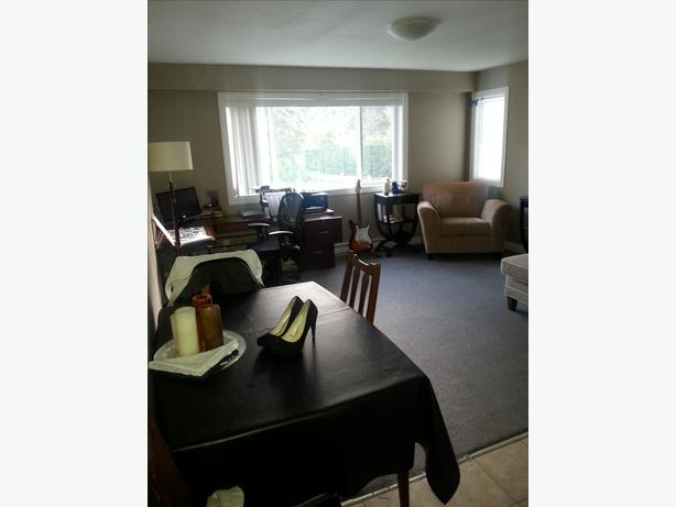 Looking For Room To Rent In Guelph