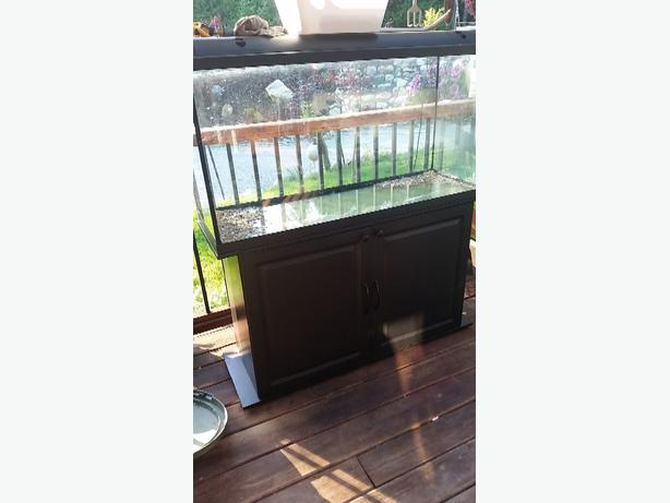 100 gallon hagen brand fish tank and black wood stand and for 100 gallon fish tank with stand