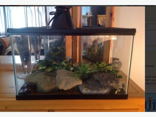 10 Gallon Terrarium With Supplies Gloucester, Ottawa 10 Gallon Vivarium