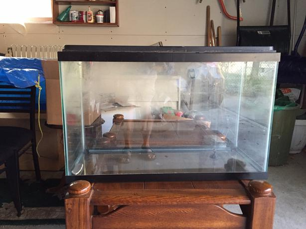 Fish tanks for sale regina 40 or obo tank top for tank for Best tank cleaning fish