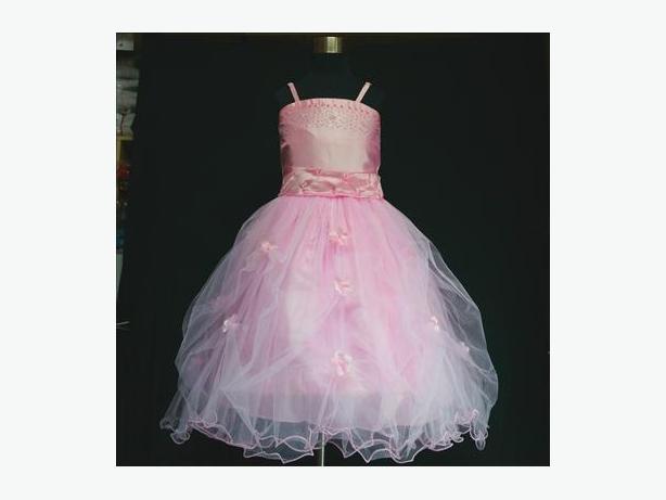 Brand New Pink Christening Wedding Bridesmaid Flower Girls Dress