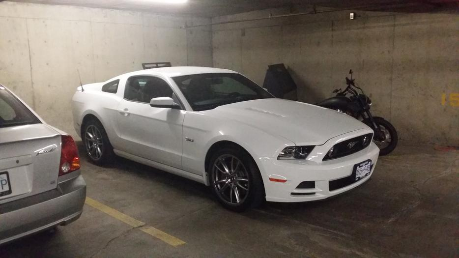 2014 ford mustang gt 400a track package victoria city victoria mobile. Black Bedroom Furniture Sets. Home Design Ideas