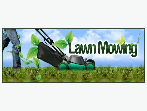 Need your lawn mowed? Let me help...