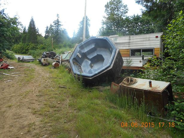 Fish pond lake cowichan cowichan for Pond fish wanted