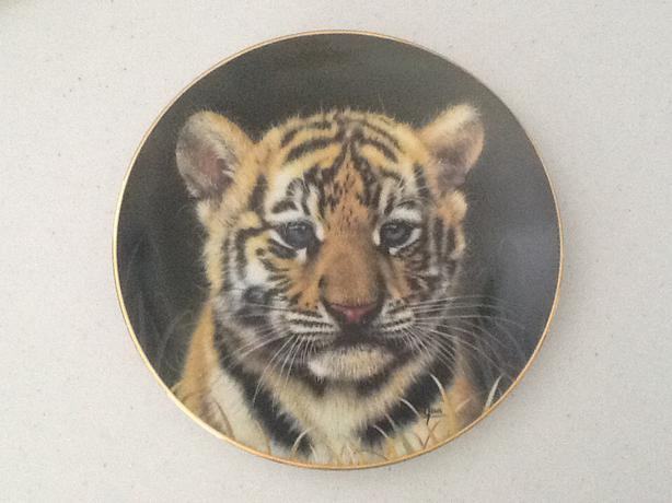 Princeton Gallery -7 plates of The Cubs of the Big Cats Plate Collection