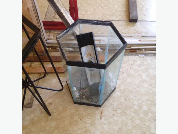 15 gallon fish tank central nanaimo nanaimo for Hexagon fish tank lid