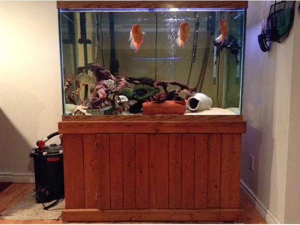 150 Gallon Tall Aquarium And Fish Tank Supplies Esquimalt