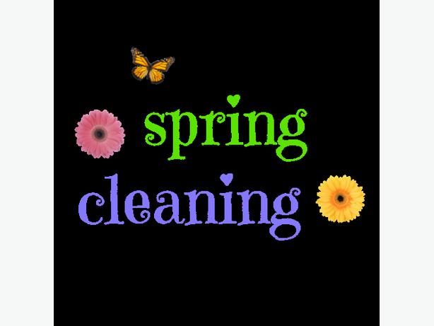 Spring Clean Your Home Sparkle Shine The Inside