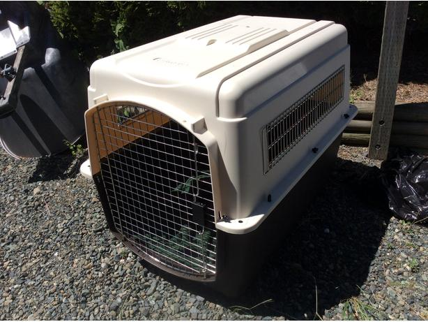 Large breed dog kennel parksville nanaimo for Giant breed dog kennel