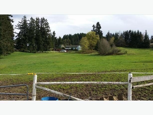 Pasture For Rent Year Round Duncan Cowichan