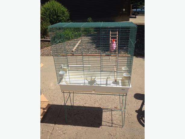 Bird Food Cage Sale At Toronto