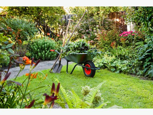 WANTED New Gardening Clients Victoria City Victoria