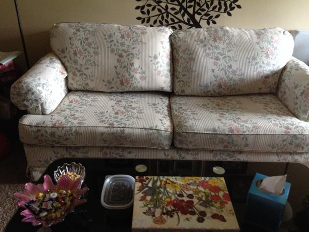 sofa hide a bed north regina regina. Black Bedroom Furniture Sets. Home Design Ideas