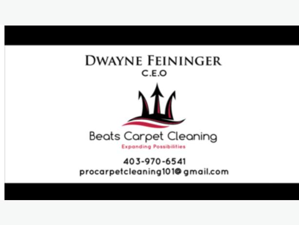 Professional Carpet And Upholstery Cleaning South East