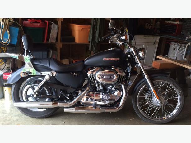 2008 Custom Harley Sportster 1200