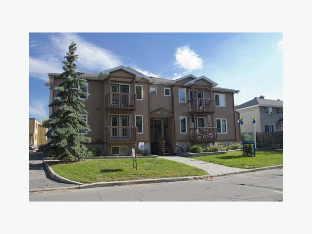 Renovated 2 Bdrm Apartment For Rent Off Carling Ave 1230 Central Ottawa Inside Greenbelt