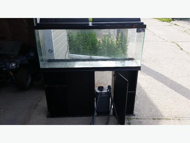 55 gal fish tank with stand and pump maples tyndall for 55 gallon fish tank with stand