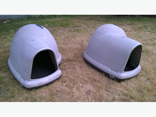 Extra Large Igloo Dog House How Much Is It