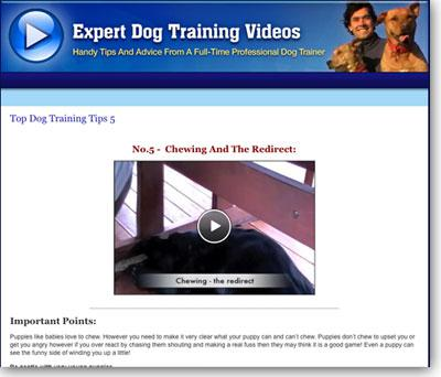 Dog Training Oshawa