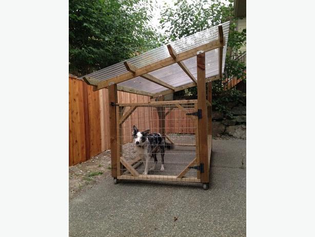 Dog Run + Dog Shelter + Dog Kennel