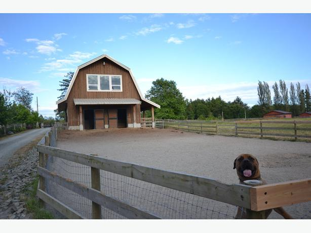 Functionally Classified Barn : Open house sunday july surrey incl white