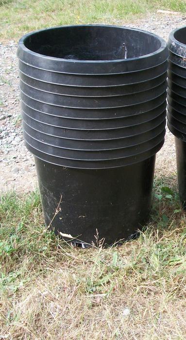 plant pots 3 gallon to 20 gallon duncan cowichan. Black Bedroom Furniture Sets. Home Design Ideas