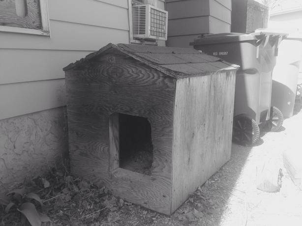 Double insulated dog house east regina regina for Insulated double dog house