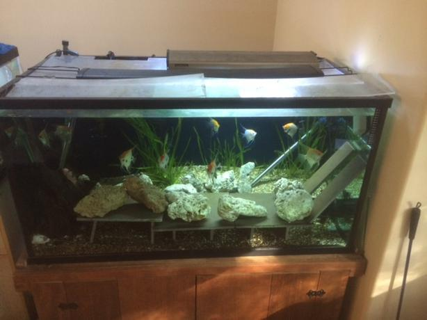 125 gallon aquarium and stand in excellent condition west for 125 gallon fish tank
