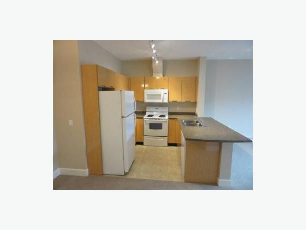 Room For Rent With Private Bathroom In Newer Condo Saanich