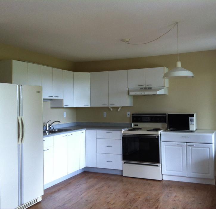 Kitchen Appliances Regina: Kitchen Cabinets Must Go! Saanich, Victoria
