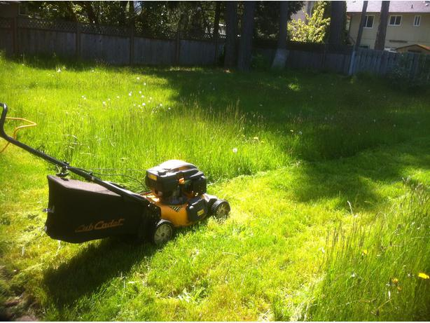 Earth friendly affordable landscaping services central for Affordable garden services