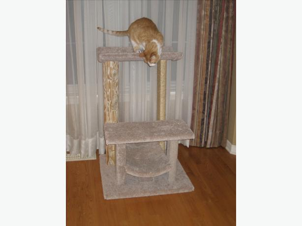 New Multi-surface cat tree for sale!