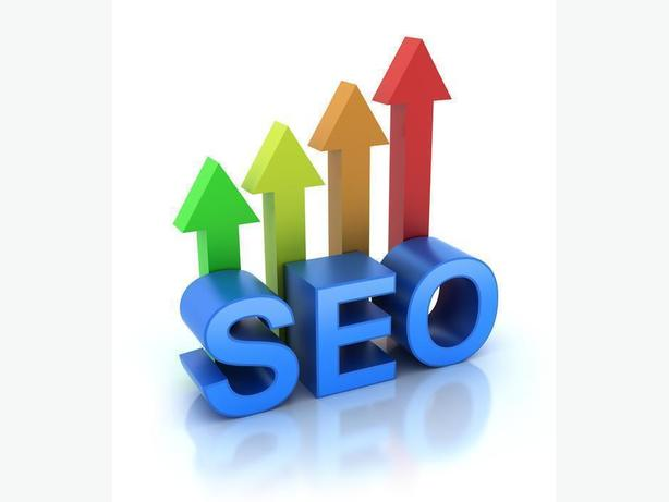 Search Engine Optimization (SEO) Professional Seeking Clients