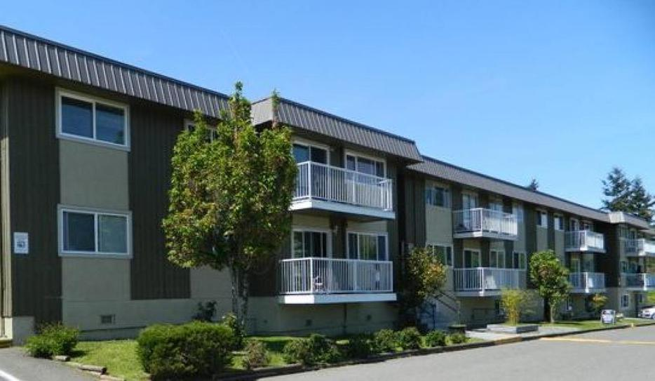 400 for mature male grad student or working professional for 7 summerland terrace