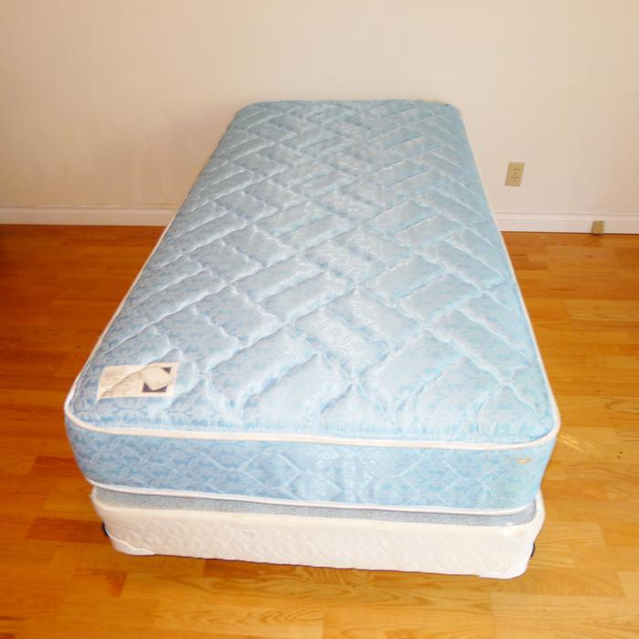 Twin Size Mattress And Box Spring Delivery Available