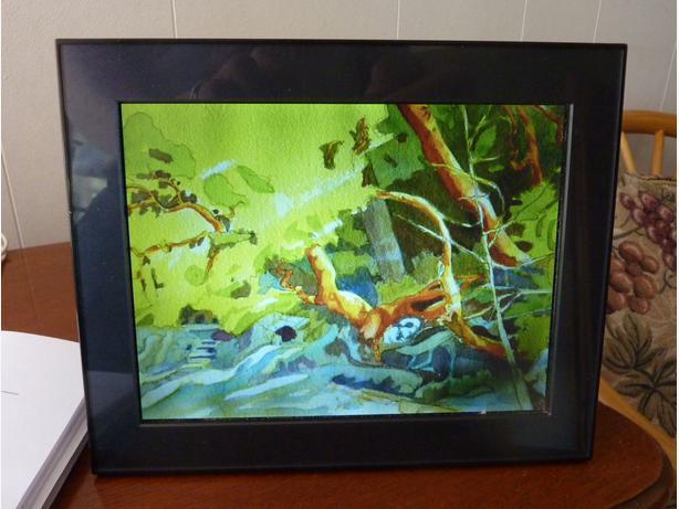 kodak digital picture frame oak bay victoria. Black Bedroom Furniture Sets. Home Design Ideas