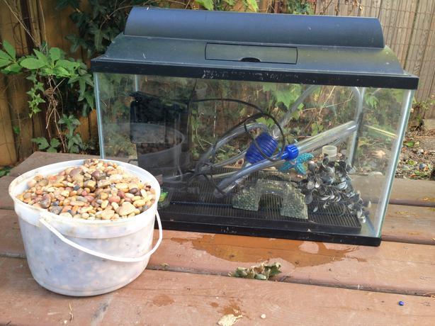 10 gallon fish tank cowichan bay cowichan for 10 gallon fish tank with filter