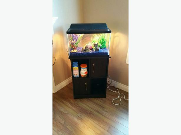 Reduced! 10 Gallon Fish Tank and all accessories plus ... 10 Gallon Fish Tank Stand