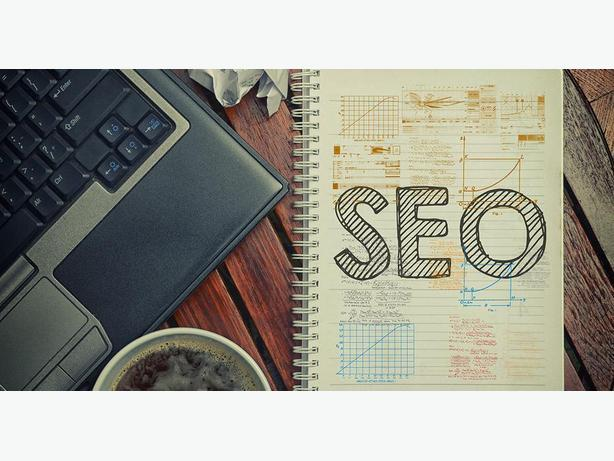 Experienced Search Engine Optimization (SEO) Professional
